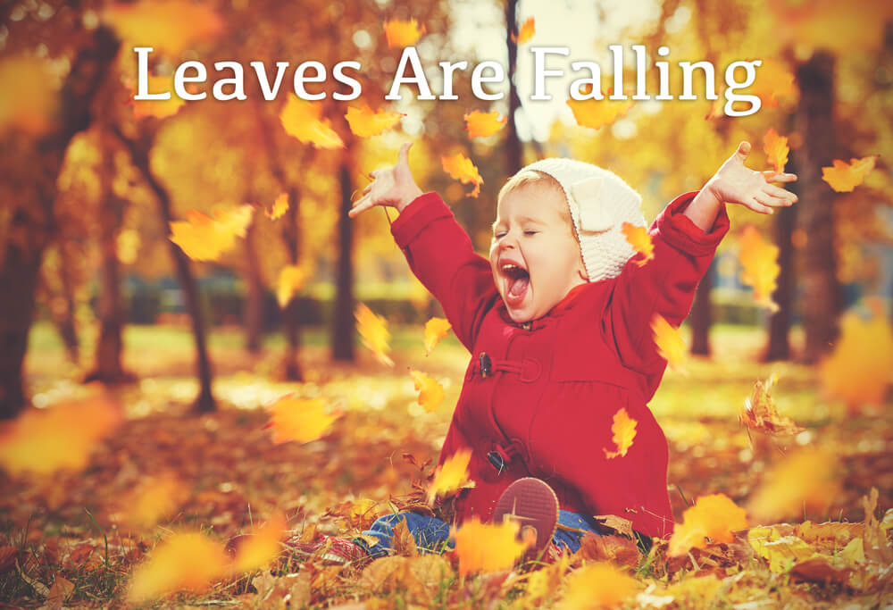 leaves-are-falling
